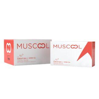 Muscool 60 Saquetas, a suplementação oral com creatina + HMB-Ca está associada a uma melhoria no treino físico de resistência